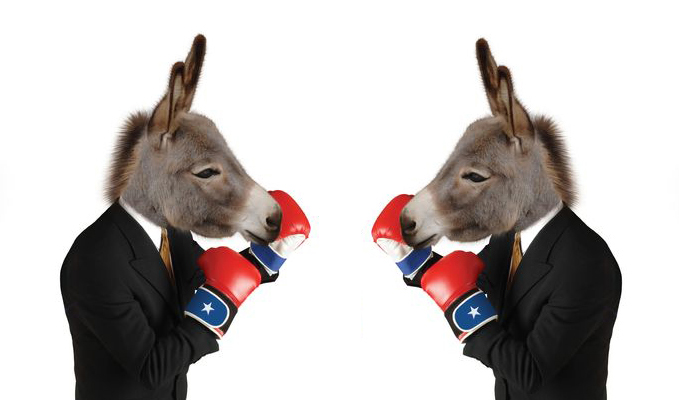 fighting_donkeys2
